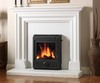 ESSE  :  301 Multi-fuel inset convector stove  5kw  -FULL ESSE RANGE AVAILABLE-
